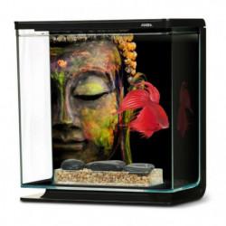 MARINA Kit aquarium équipé Bouddha pour betta - 3 L