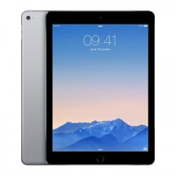 Apple iPad Air 2 16Go WIFI Gris sideral - Grade A