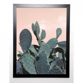BRAUN STUDIO Affiche encadrée Cactus Raquettes 57x77cm