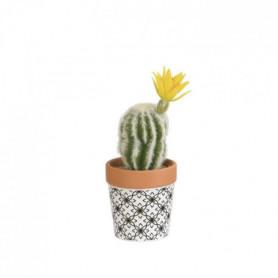 Mini Cactus laineux fleuri - En pot ethnique noir