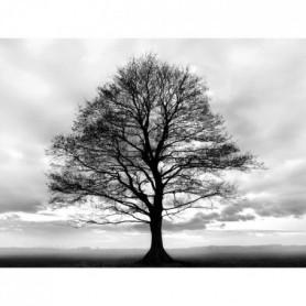 BLACK TREE Tableau déco 60x80 cm