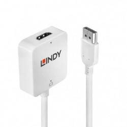 LINDY Convertisseur HDMI vers DisplayPort 4K